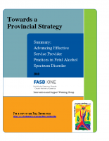 Summary Toward a Provincial Strategy – Advancing Effective Service Provider Practices 2010