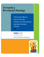 Toward a Provincial Strategy – Advancing Effective Service Provider Practices 2010